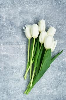 Tulipes blanches sur fond gris.