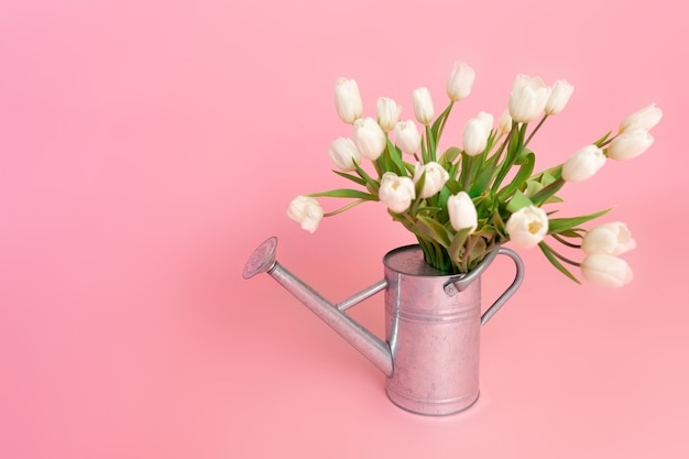 Tulipes blanches fraîchement coupées dans un arrosoir en acier