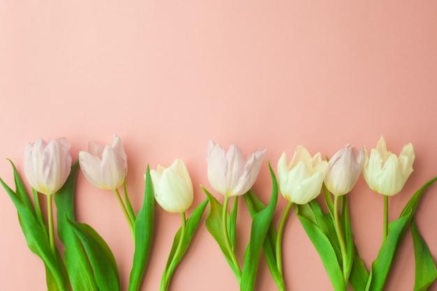 Tulipes blanches et roses sur fond rose. conception de la journée de la femme, printemps.