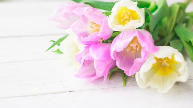 Tulipes blanches et violettes sur un fond en bois blanc