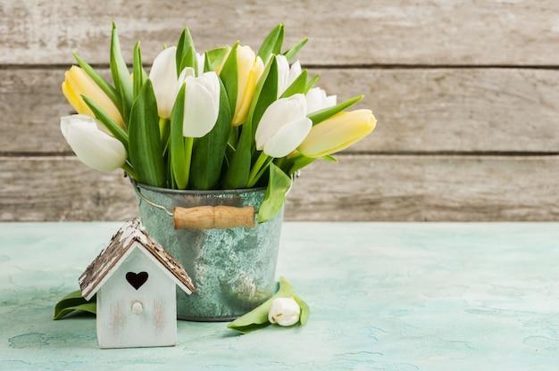 Tulipes, cabane à oiseaux sur béton