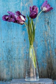 Tulipes dans un vase transparent