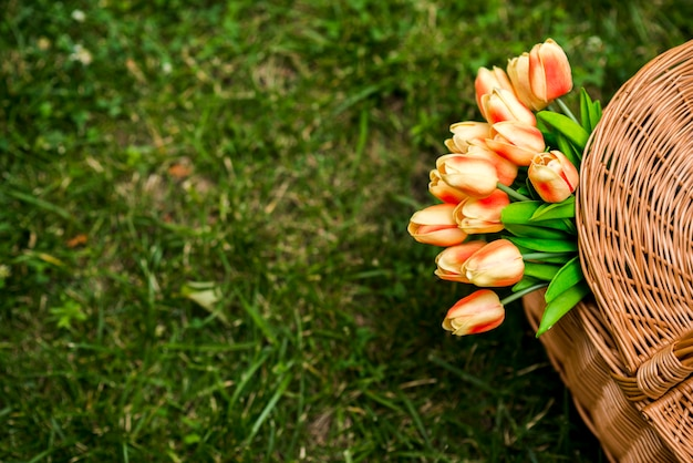 Tulipes dans une vue de dessus de panier pique-nique