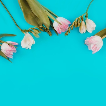 Tulipes avec des fleurs sur la table