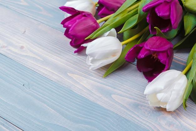 Tulipes sur fond de bois bleu. image de fleur de printemps.