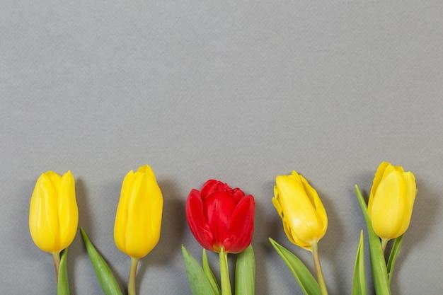 Tulipes sur fond de papier gris