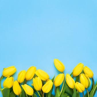 Tulipes jaune vif sur fond bleu.