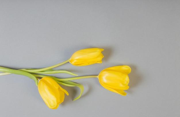 Tulipes jaunes sur fond gris, couleur 2021