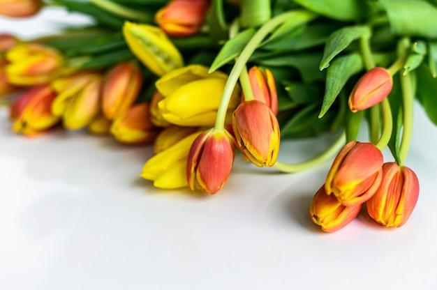 Tulipes jaunes, orange et rouges