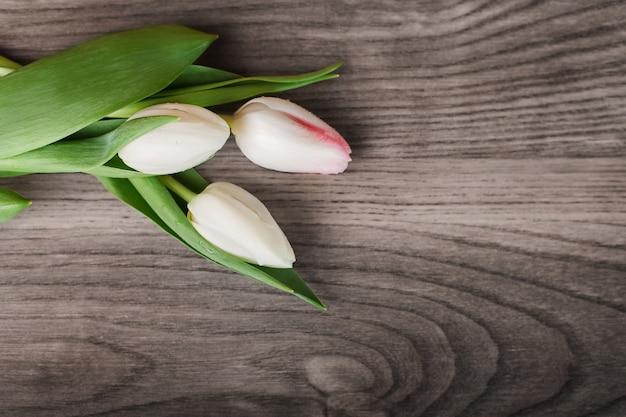 Tulipes lumineuses sur planche de bois