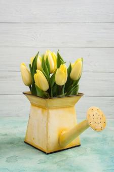 Tulipes printanières dans un arrosoir jaune