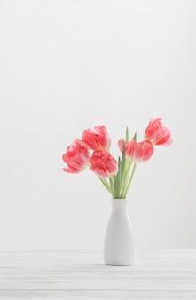 Tulipes de printemps dans un vase blanc sur une surface blanche