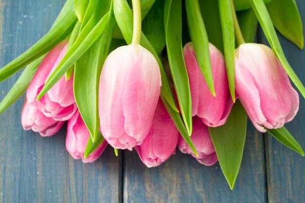 Tulipes roses sur bois bleu