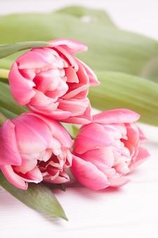 Tulipes roses délicates sur un fond en bois blanc. fermer. composition de fleurs. fond de printemps floral. saint valentin, pâques, fête des mères.