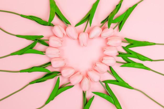 Tulipes roses de printemps disposées en forme de coeur sur fond rose
