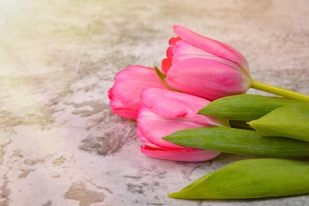 Les tulipes sont lumineuses, fraîches, roses sur une table gris clair