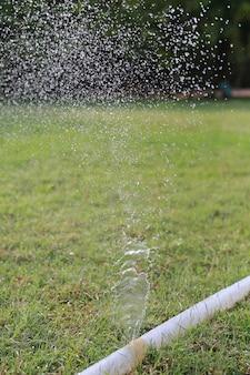 Un tuyau d'eau a fait une fuite lors de l'arrosage