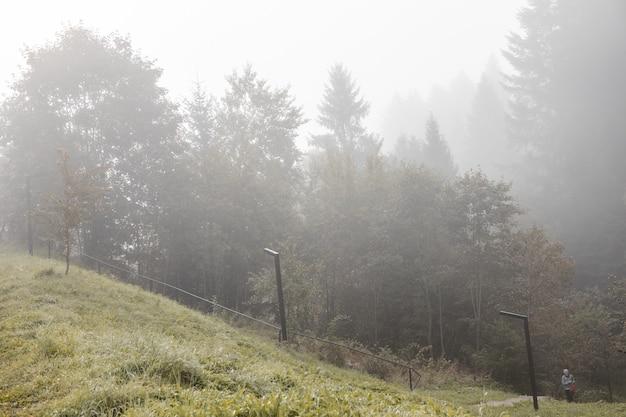 Ukraine carpates skidnitsa. la journée ensoleillée du matin est dans le paysage de montagne. carpates, europe. monde de la beauté. grande résolution.