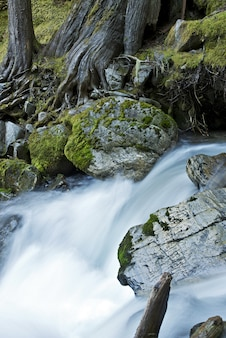 Unknown creek
