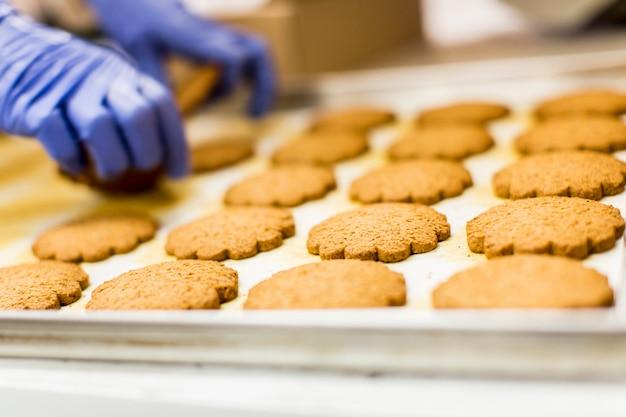 Usine de cookies