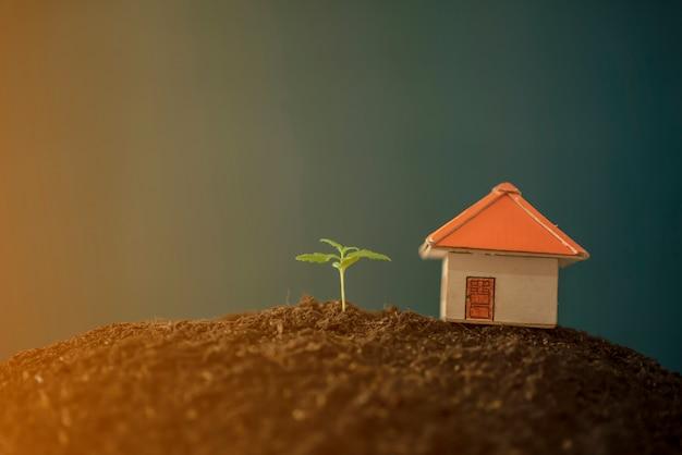 Usine grandit d'économiser de l'argent pour le concept d'entreprise d'investissement.