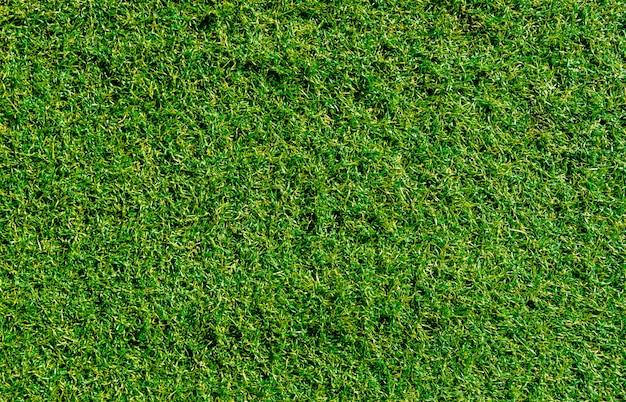 Utilisation de gazon artificiel de décoration verte pour le fond du sport.