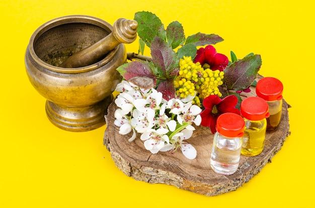 Utilisation de plantes médicinales en médecine alternative studio photo