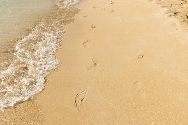 Vacances: empreintes de pas sur une plage de sable fin par une journée ensoleillée