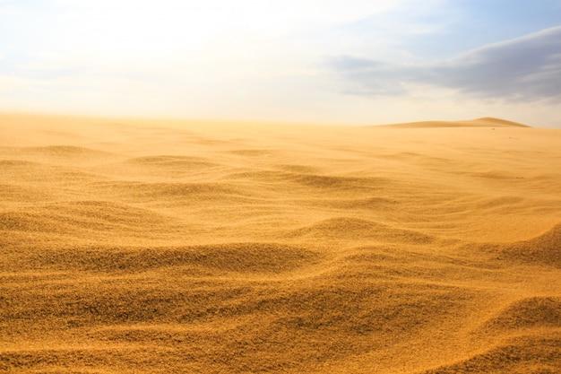 Vague sur le désert