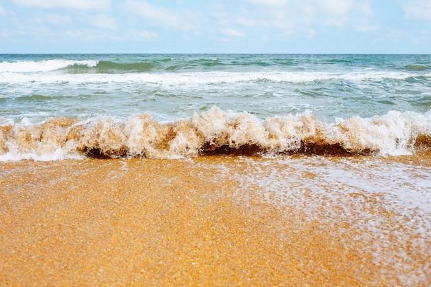 La vague de mer coule sur une plage de sable fin.