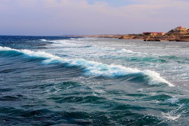 Vague océanique puissante approchant du rivage