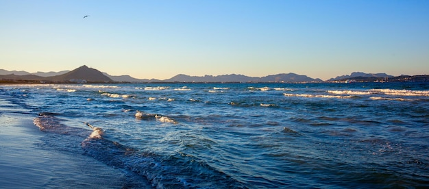 Vagues sur le bord de mer de majorque