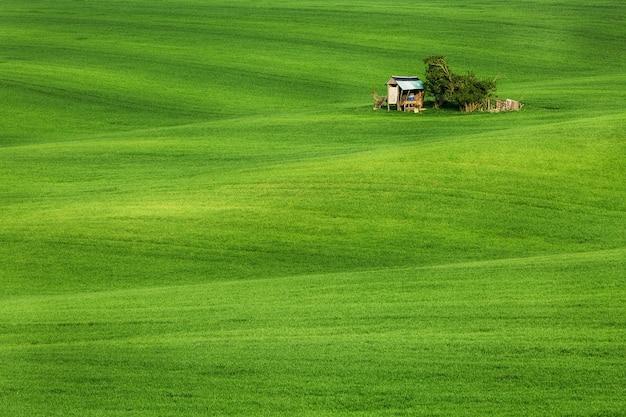 Vagues de champ avec cabane, moravie du sud