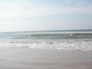 Vagues de freinage, de la mer