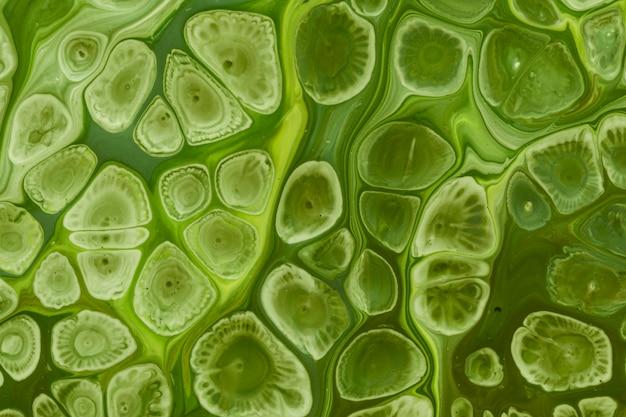 Des vagues vertes et des bulles d'acrylique fluide pour la peinture