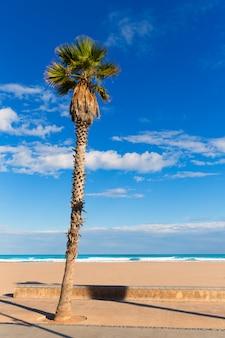 Valencia malvarrosa las arenas palmiers à la plage à patacona