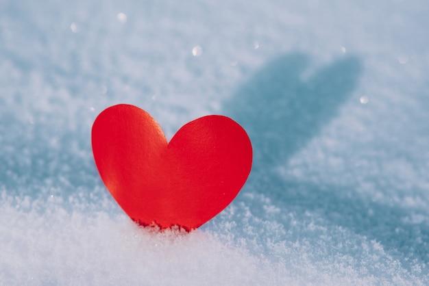 Valentin solitaire. coeur rouge dans la neige froide et glaciale du matin. la saint-valentin.