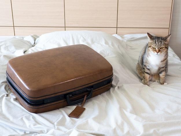 Valise bagages valise prêt à voyager week-end de vacances