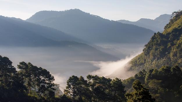 Vallée et brume au matin en thaïlande
