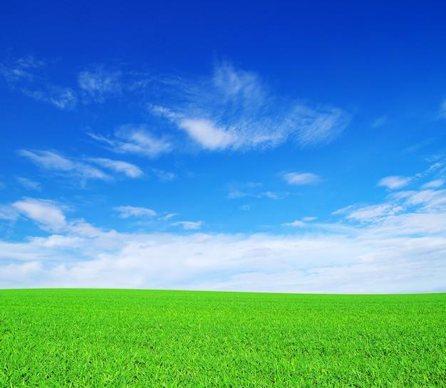 Vallée des champs et ciel bleu