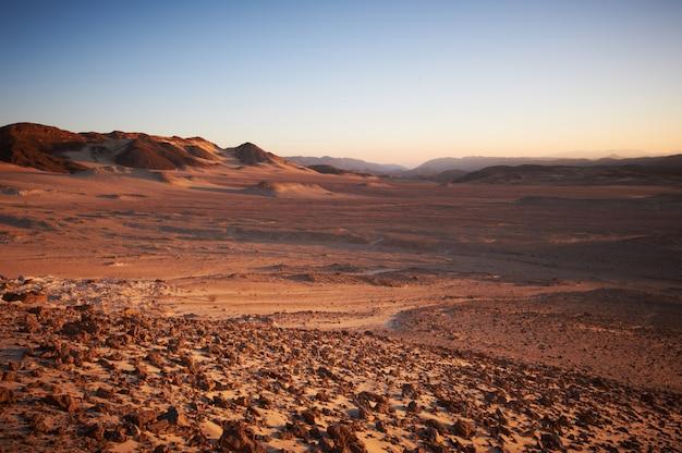 Vallée dans le désert du sinaï avec montagnes