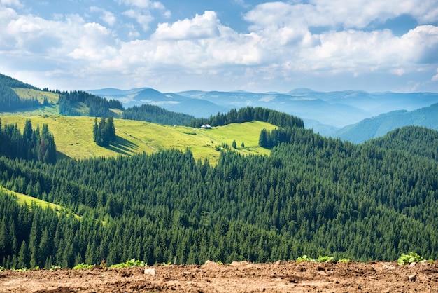 Vallée ensoleillée verte dans les montagnes et les collines. paysage naturel