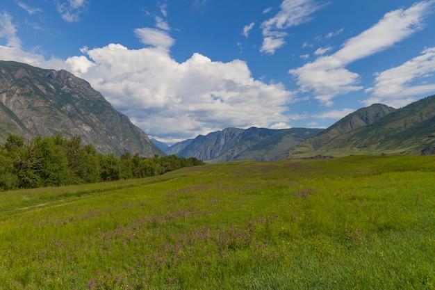 Vallée des fleurs dans les montagnes de l'altaï