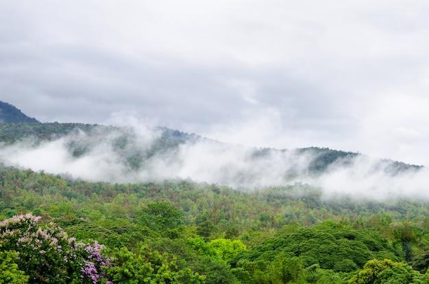 Vapeur sur fond de paysage montagne et nuage ciel.