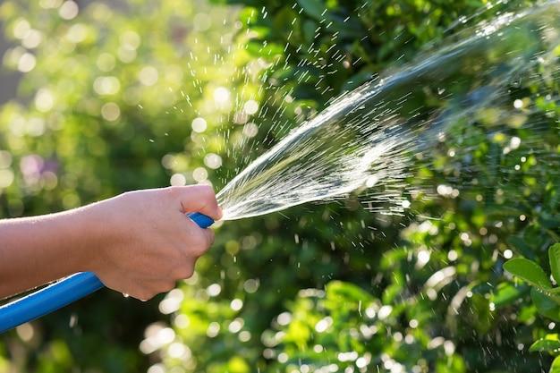 Vaporiser de l'eau sur le jardin par un tuyau en caoutchouc