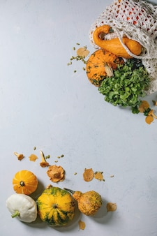 Variété de citrouilles colorées