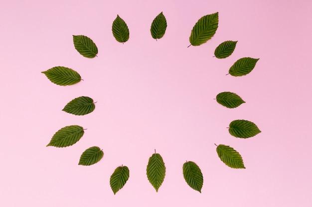 Variété de feuilles formant un cercle