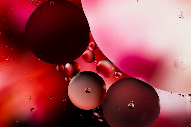 Variété de merveilleuses formes abstraites avec de l'huile dans l'eau