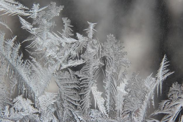 Variété de motifs de gel sur une fenêtre d'hiver
