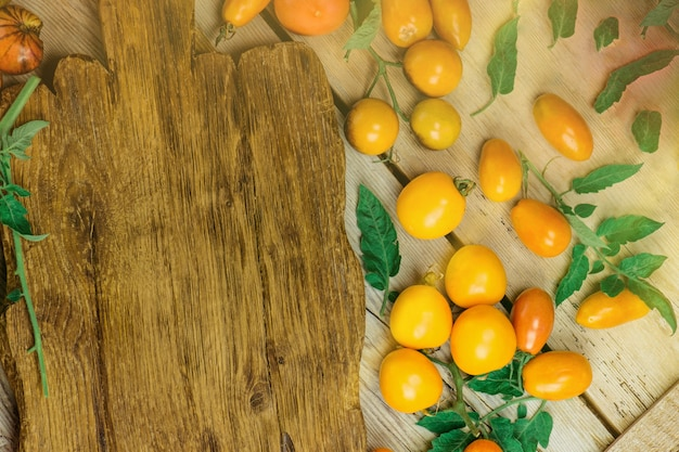 Variété de tomates colorées fraîches. l'agriculture biologique est respectueuse de l'environnement. groupe de tomates fraîches